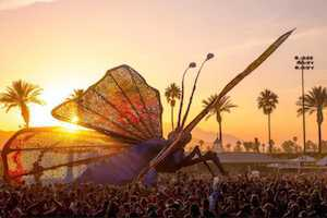 17 Things I Wish I Knew For my First Coachella