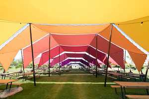 Solochella: Why Going to Coachella Alone Is Awesome