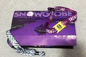 Snowglobe Tickets: Cost, Sale Date, Sell Out Risk, & More